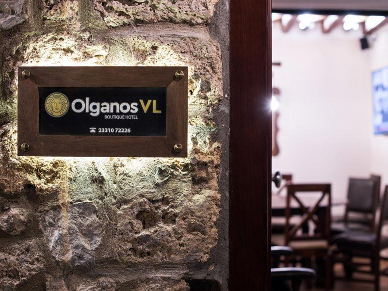 Olganos VL